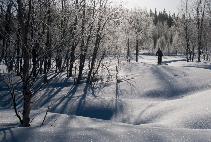 vintercykel-1040977